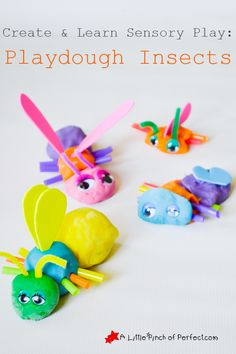 Build and Learn Science Activity: Playdough Insects (What makes an insect an insect?) | A Little Pinch of Perfect