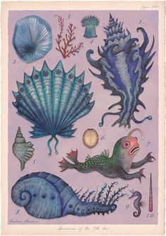 Tales of the Sea: Illustrator creates series of fantastical marine-based characters   Creative Boom. Vladimir Stankovic. Illustration Inspiration, Sea Illustration, Botanical Illustration, Fantasy Creatures, Sea Creatures, Drawing Painting Images, Art Nouveau, Art Watercolor, Bathroom Art