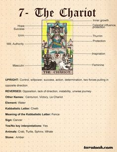 On this page I am sharing Free Printable Reversed Tarot Card Meanings Cheat Sheets with many keywords for each card. It is always a debate among tarot readers The Chariot Tarot, Celtic Cross Tarot, Tarot Interpretation, Tarot Cards For Beginners, Tarot Card Meanings, Meaning Of Tarot Cards, The Star Tarot Meaning, Tarot Card Spreads, Tarot Astrology