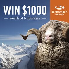 "WHO LOVES ICEBREAKER?  We have $1000 worth of the finest merino products to give away to one lucky person. During the next fortnight you can enter once through each of our community platforms (Facebook, Twitter, Pinterest, Instagram), giving you up to four entries into the draw!  HOW TO ENTER: Start following Mainpeak Re-pin competition photo to your board and include ""#mainpeak"" in the comments field   T: http://on.fb.me/13nX0xz"
