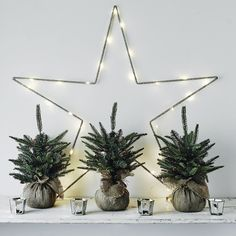tabletop Christmas trees in burlap sacks