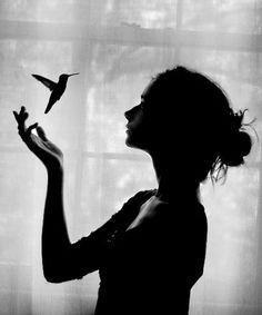 Gwen hummingbird                                                                                                                                                                                 Plus