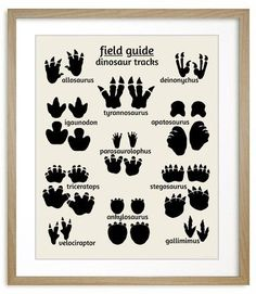 Dinosaur Field Guide Series Poster set of 3 include the dinosaur art poster, dinosaur tracks print and the dinosaur map print. All 3 make a perfect addition to a dinosaur nursery, or any nature themed room. Perfect for kids also. Dinosaurs Preschool, Dinosaur Activities, Dinosaur Projects, Dinosaur Crafts Kids, Dinosaur Kids Room, Dinosaur Dinosaur, Dinosaurs For Kids, Preschool Crafts, Dinosaur Exhibit