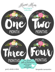 GIFT  Monthly Baby Girl Stickers Month Vintage look style Roses Floral Stickers Milestone Bodysuit Nursery Decor Photo Prop by MaineMomBoutique on Etsy https://www.etsy.com/listing/239816748/gift-monthly-baby-girl-stickers-month