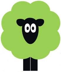 Image result for irish sheep