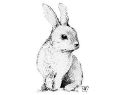 Bunny Rabbit Instant Download. DIY Iron On Transfer Art. Digital Art. Printable…