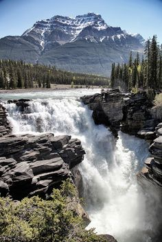 Athabasca Falls in Jasper National Park, Canada