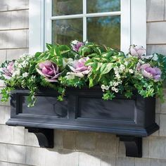 Devon Window Box