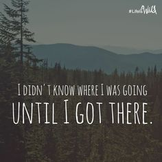 "quote from your favorite author ""I didn't know where I was going until I got there."" - Cheryl Strayed, Wild"