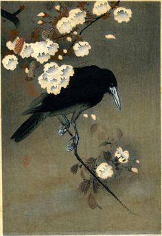 """silenceformysoul: """" Ohara Koson (1877-1945) - Crow and Blossom, c. 1910 """""""
