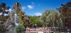 Zoo de la Palmyre - http://www.activexplore.com/activity/zoo-de-la-palmyre/
