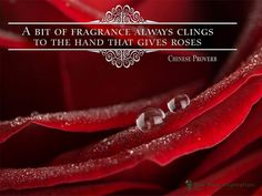 Daily Positive Inspirational Quote Photo With a Chinese Proverb