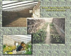 Underground greenhouses can let you grow plants year round, even in cold climates.