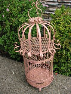 Bird Cage, I had one just like this one. Gave it to my son & daughter-in-law. My son sand blasted it to remove the rust. Can't wait to see the new paint job! :)