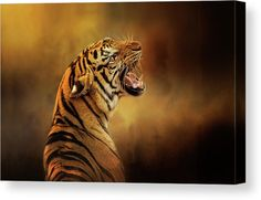 Angry Tiger Art. Powerful Portrait of a Big Cat against a striking orange and dark brown Fine Art texture. Canvas, Acrylic Prints, Posters and more. Visit our shop to see the options. Diana van Tankeren - Fine Art Prints for your Wall Decor and Interior Design needs. Diana, Tiger Art, Thing 1, Close Up Portraits, Animal Posters, Texture Art, Print Artist, Cool Artwork, Cat Art