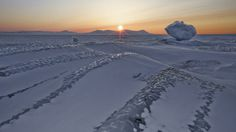 Svalbard, Norway - The midnight sun  From the end of April to the end of August, the sun never sets on Svalbard. It rests calmly above the horizon looking down upon the oceans of ice, before a hiatus from October to February when it is rarely seen.
