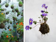 String Gardens  http://annekata.com/2011/03/string-gardens-and-other-flowers/