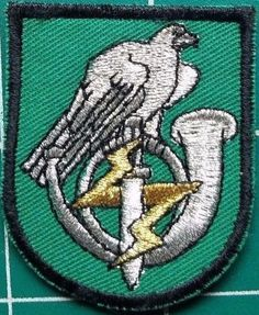 LITHUANIA LITHUANIAN RARE SPECIAL FORCES JAEGER ARMY MILITARY BERET PATCH
