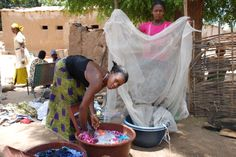Women washing and impregnating their bed nets.