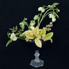En la vida hay personas  momentos sentimientos muchas cosas lindas que se merecen un homenaje. El hellebore es una flor pequeña y en este caso de tonos blancos y verdes que me enamora de una forma particular. Es elegante y delicada y éste es mi pequeño homenaje. . . . . . . . . . . . . . . . . . #enelbosque #enelbosqueflorece #flowers #flores #flower #flor #naturaleza #nature #naturelovers #artefloral #floraldesign #floralart #arreglofloral #floristeria #farmerflorist #florist #farmer…