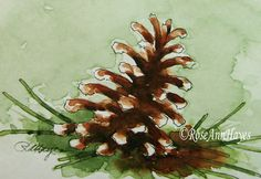 Pine Cone Watercolor Painting Print Still Life by RoseAnnHayes