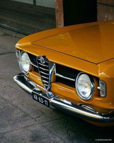 Alfa Romeo Giulia GT letter box
