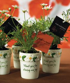 Wedding Favors Mini Ceramic Flower Pots Thank you for sharing our day.  Give a special Thank you to your guests by adding your own potted plant,  an artificial flower, goodies or a tea light candle to this mini flower pot.    Mini flower pots measures 2 by 2 1/3 inches tall    Please note that plants and other items shown are for  product use and display ideas only  and are not included.