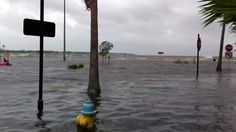Tropical Storm Debby Floods Bayshore Boulevard in Tampa