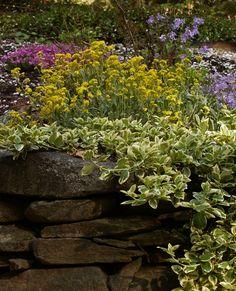 Garden Ideas New England northeast landscaping ideas | landscaping ideas > garden design