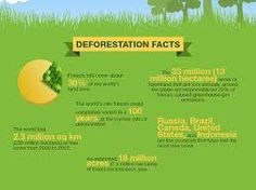 Infographic: Deforestation & How volcanoes work on Behance ...
