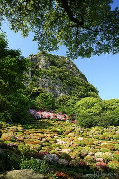 Mifuneyama Rakuen |Takeo, Saga Prefectura, japan !!! Flickr - Photo Sharing!