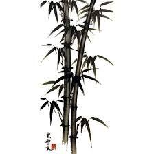"""Résultat de recherche d'images pour """"dessins de bambous"""""""