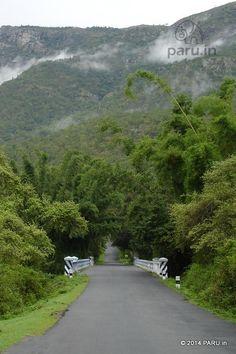 Road to Ooty near Masinagudi