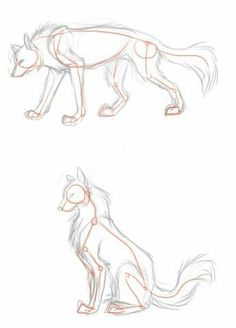 Trendy drawing wolf poses ideas - Drawing Still 2020 Animal Sketches, Art Drawings Sketches, Cute Wolf Drawings, Easy Animal Drawings, Fantasy Drawings, Horse Drawings, Pencil Drawings, Drawing Techniques, Drawing Tips