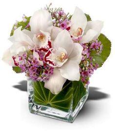 Orchids bucket
