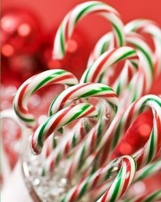 Find images and videos about christmas, candy and christmas candy canes on We Heart It - the app to get lost in what you love. Green Christmas, Christmas Candy, Christmas Colors, All Things Christmas, Vintage Christmas, Christmas Holidays, Celebrating Christmas, Grinch Christmas, Christmas Bells