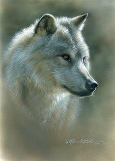 Wolf by artist Rebecca Latham. Beautiful Creatures, Animals Beautiful, Cute Animals, Wildlife Paintings, Animal Paintings, Small Paintings, Beautiful Paintings, Tier Wolf, Wolf Love