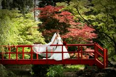 A stunning backdrop to capture your wedding memories in our Japanese Gardens.