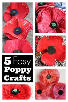 5 Easy Poppy Crafts for Kids - Simple poppies made from common household supplies like paper plates, coffee filters, cupcake liners etc. Great Remembrance Day crafts for toddlers, preschoolers and young school-aged children. Poppy Craft For Kids, Crafts For Kids To Make, Projects For Kids, Kids Crafts, Easy Crafts, Art For Kids, Recycling Projects, Homemade Crafts, Remembrance Day Activities