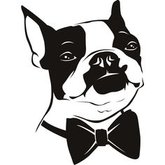 drawings of boston terriers | Bow Tie Boston Terrier Dogs Animals Wall Art Decal Wall Stickers ...