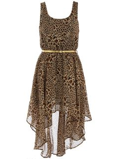 Aysmmetric Animal print dress. - Party Dresses - Dresses - Dorothy Perkins
