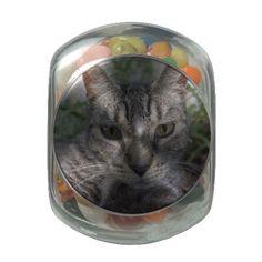 Pretty Kitty Jelly Belly Candy Jar