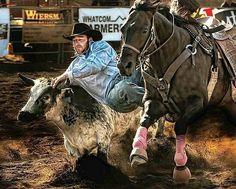 Rodeo : Steer Wrestling / Bulldogging