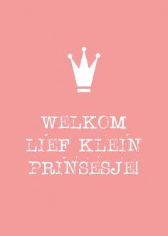Kaartje Welkom lief klein prinsesje! Ontwerp: byBean. Je shopt 'm hier: http://www.bybean.nl/welkomliefkleinprinsesje