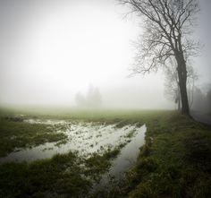 https://flic.kr/p/As5LyJ | Mist in the Bohemian forest