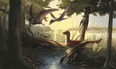 Newly identified dinosaur fauna sheds light on evolution