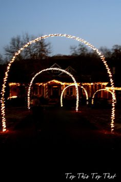 Lit arches: diy with PVC pipe. Maybe an idea for dad and Johnny to work on?