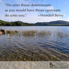 acadian Quotes