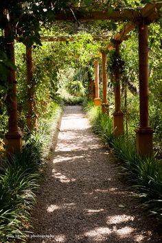 Menton Daily Photo: Val Rahmeh Garden - the Pergola
