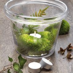 Natur im Glas - DIY Deko für schöne herbstliche und doch elegante Stimmung zu Hause - Einfach Moos, Blätter und Blümchen beim nächsten Spaziergang sammeln, Alles in ein Glas drapieren, Teelicht dazu und schon ist die Deko fertig!